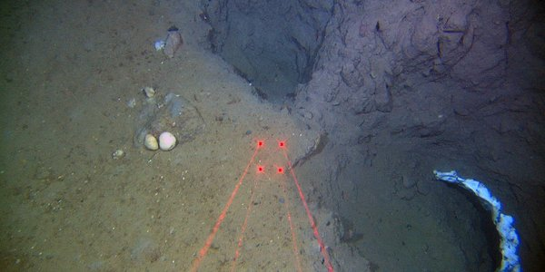 Peculiar holes in the seabed offshore Finnmark